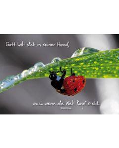 Faltkarte: Gott hält dich in seiner Hand - neutral