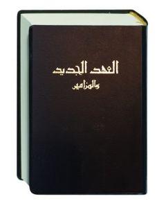 Neues Testament Arabisch (ältere Übersetzung)