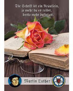 Postkarten: Die Schrift ist ein Kräutlein - 12 Stück