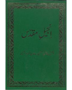 Neues Testament - Urdu grün
