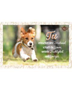 Tee-Postkarte - Tee erleuchtet