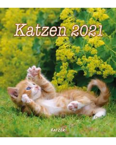 Katzen 2021 - Wandkalender
