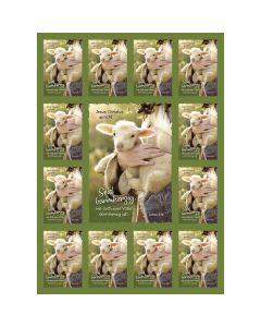 Jahreslosung 2021 - Aufkleber-Grußkarten, 4 Stück - Schaf