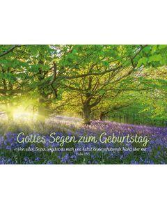 Postkarten: Gottes Segen zum Geburtstag, 4 Stück