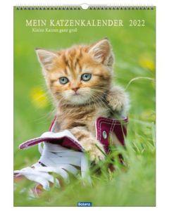 Mein Katzenkalender 2022 - Wandkalender