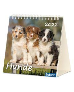 Hunde 2022 - Tischkalender