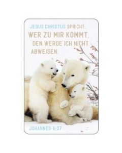 Kalenderkärtchen Eisbären 2022