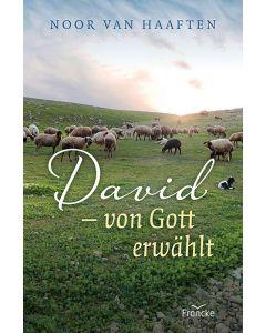 ARTIKELNUMMER: 332229000  ISBN/EAN: 9783963622298 David - von Gott erwählt Noor van Haaften