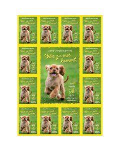 Jahreslosung 2022 - Aufkleber-Grußkarten, 4 Stück - Hund
