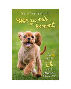 Jahreslosung 2022 - Poster A3 - Hund