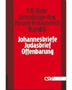 Grundzüge des Neuen Testaments, Bd. 6